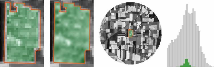 Landsat Field Surface Reflectance Comparison to Surrounding Fields