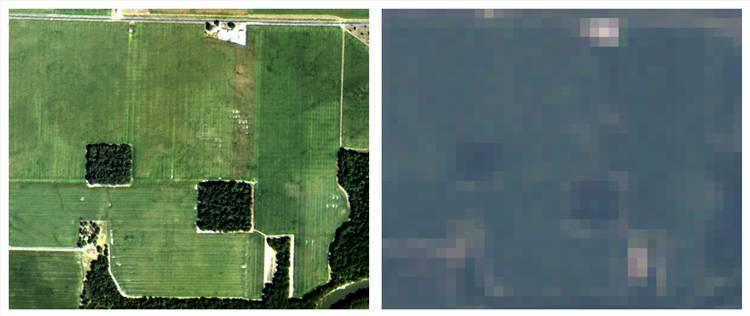 National Agriculture Imagery Program (NAIP) 1-meter resolution free aircraft-based color imagery comparison with 30-meter Landsat color composite for same extent and similar date