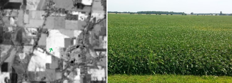 NIR surface reflectance comparison between DOS and COST atmospheric corrections methods for a soybean field
