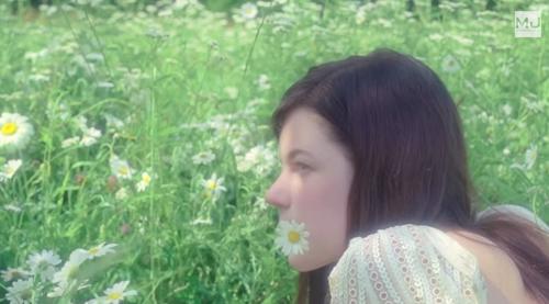 Image result for sofia coppola movies dreamy