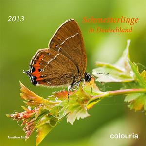 kalender schmetterlinge in deutschland 2013 blog. Black Bedroom Furniture Sets. Home Design Ideas