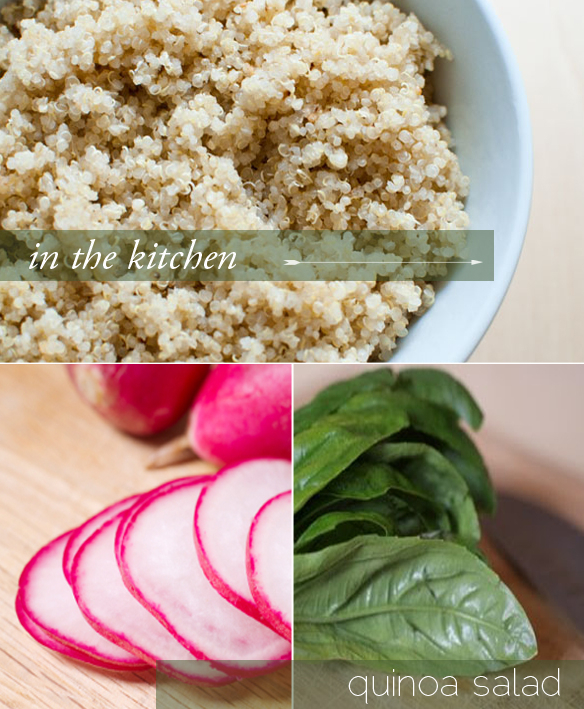 Quinoa Salad with Chicken, Radishes, and Basil