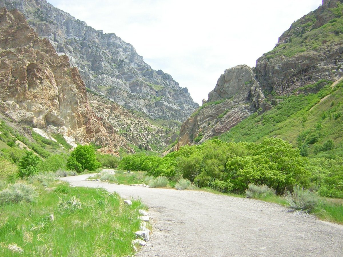 rock_canyon_5-13-06.jpg