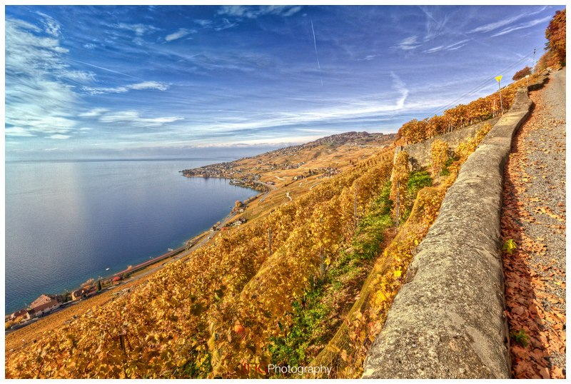 HDR single exposure Photomatix Lavaux Vineyard Vignes UNESCO Suisse Switzerland Schweiz Svizzera JHG Photography photo Canon 5D MKII 16-35mm 24-70mm 2.8 L USM Landscape Paysage Wallpaper Tourism Postcard St-Saphorin Chexbres Epesses Dézaley Rivaz Lausanne Vevey Montreux Léman Lac Geneva Lake