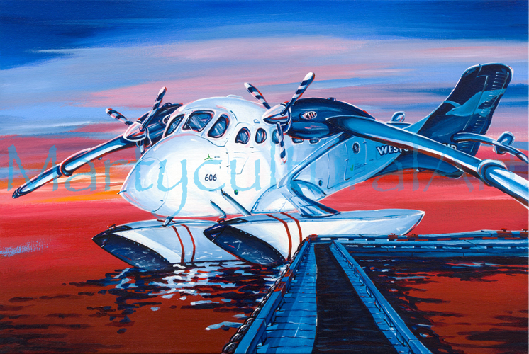 twin_otter_at_sunset.jpg