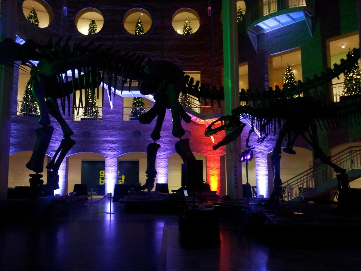 Up Lighting Fit For A Dinosaur At Fernbank Museum