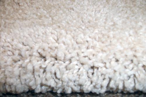 Deep pile rug rugs ideas - Deep pile carpet protector ...
