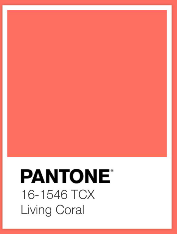Color of the year 2019 journal steve 39 s hr technology - 2019 color of the year ...