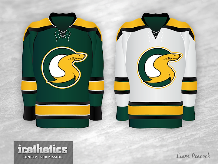 fdf1008c4 Liam read your comments and made some revisions as well as an additional  jersey design.