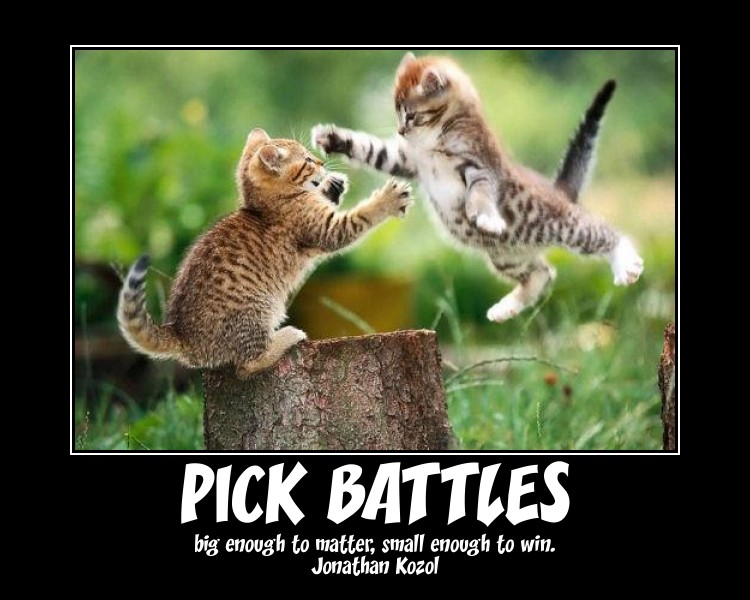 Choosing Battles Quotes. QuotesGram   Chart Pick Your Battles