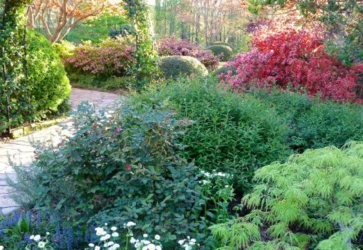 Great Shrubs For Spring Color Deb S Garden Deb S Garden Blog