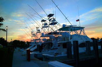 Intracoastal Or The Florida Coastline There Is Always An Expectation About What Night S Stay Along Way Will Bring Lighthouse Point Marina