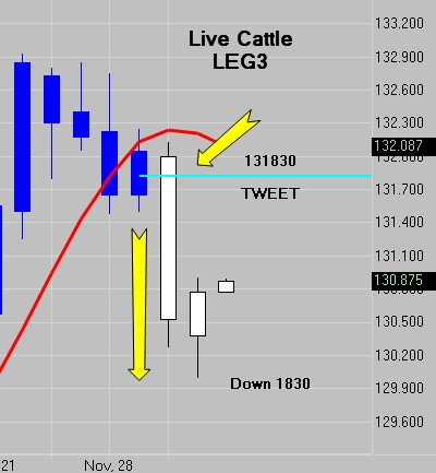 Live Cattle - LE