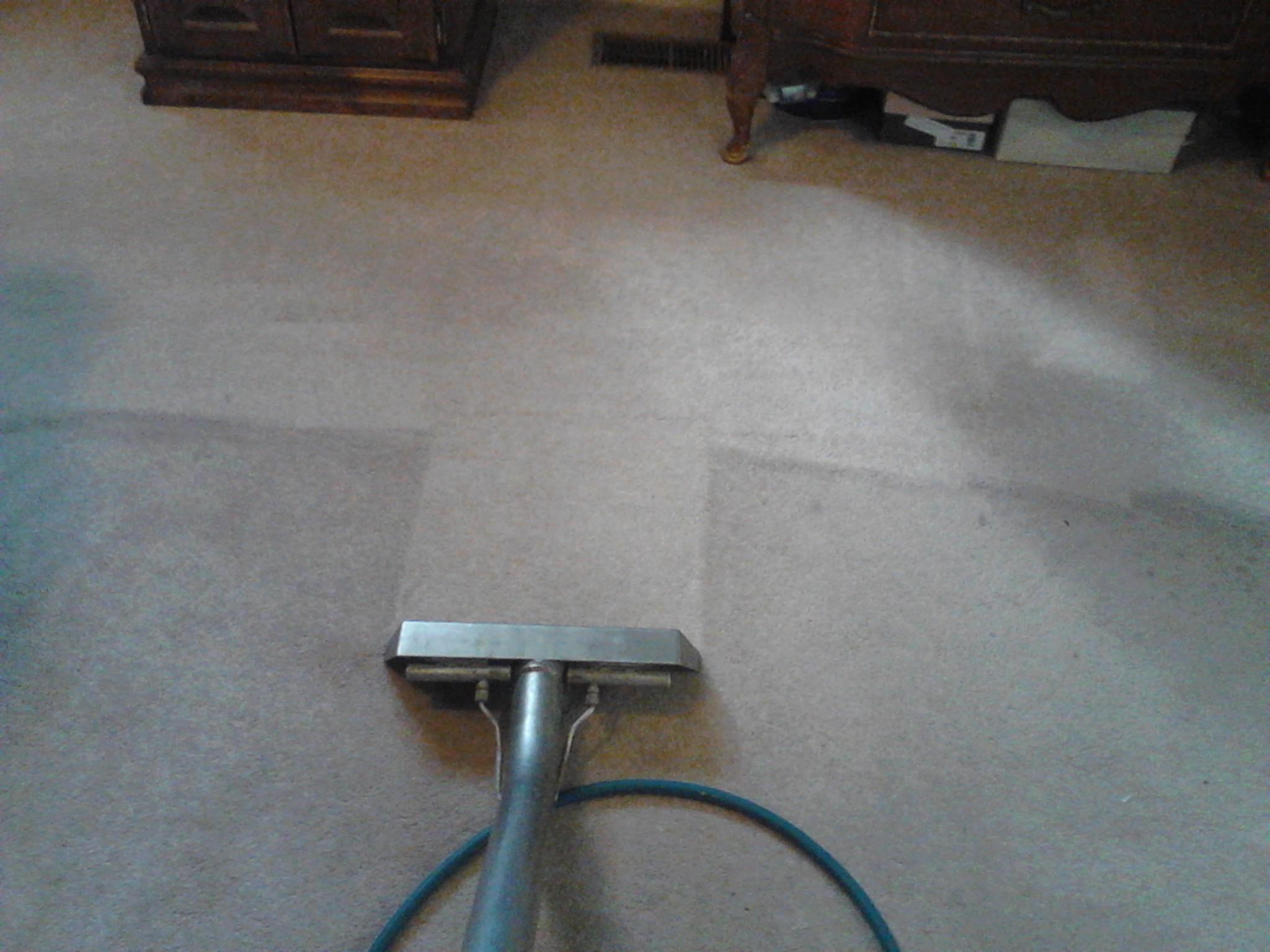 Alpine Professional Carpet Care Provo Carpet Cleaning