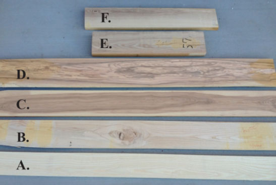 Color Variation As Seen In Several Pieces Of Ash Lumber A Rous White Sapwood Well Cared For And Manufactured Board B Slightly Off